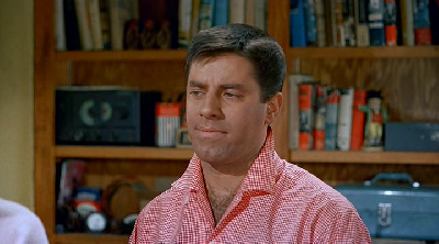 Resized Image